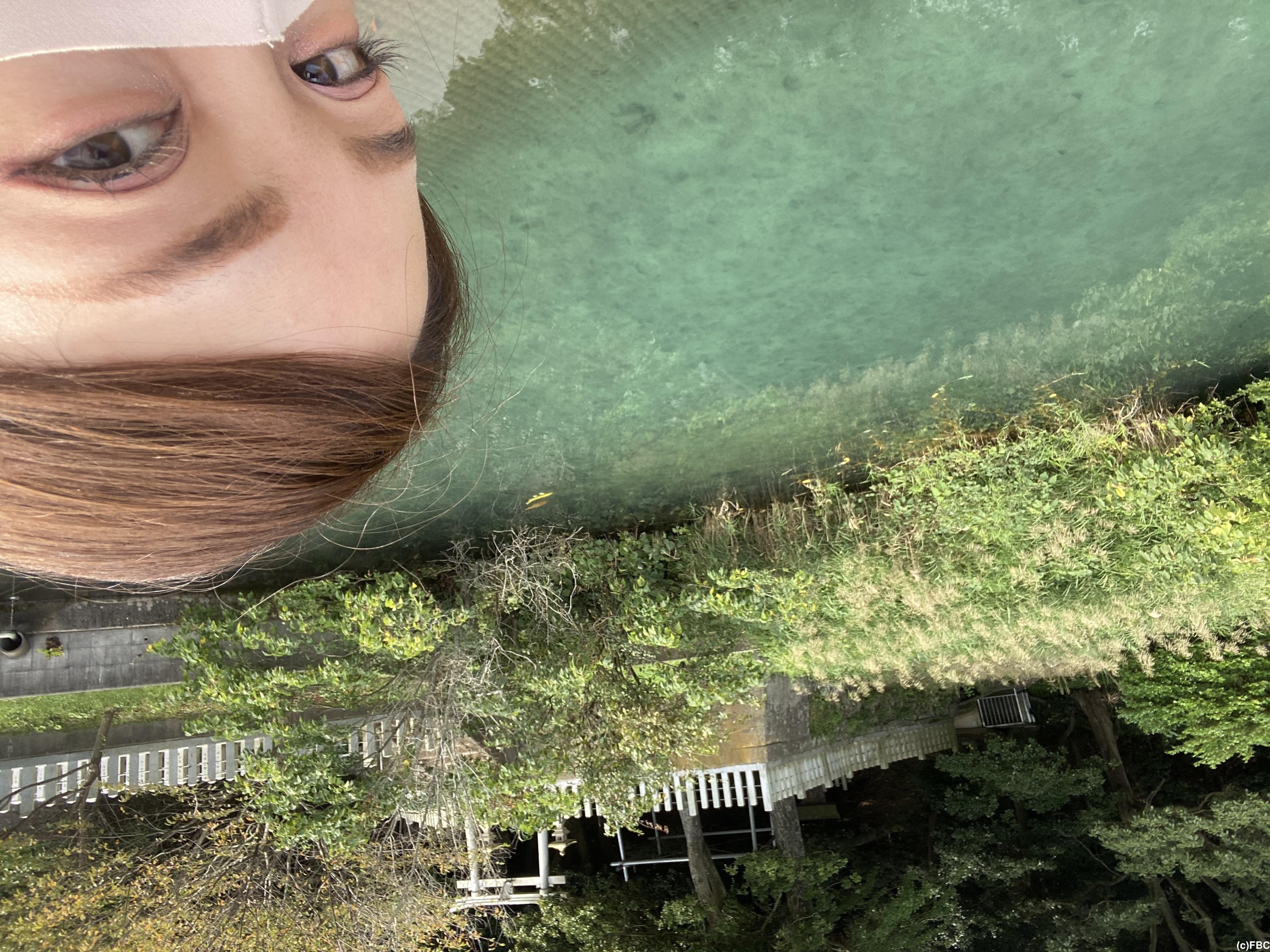 福井版・モネの池★