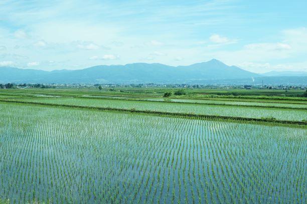 会津美里町。田んぼが広がり、張られた水に空や周りの景色が映る。