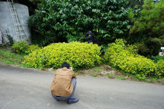 ポポーの木を説明するご夫婦(奥の濃い緑の葉の木がそう)。石井アナが撮りまくる。