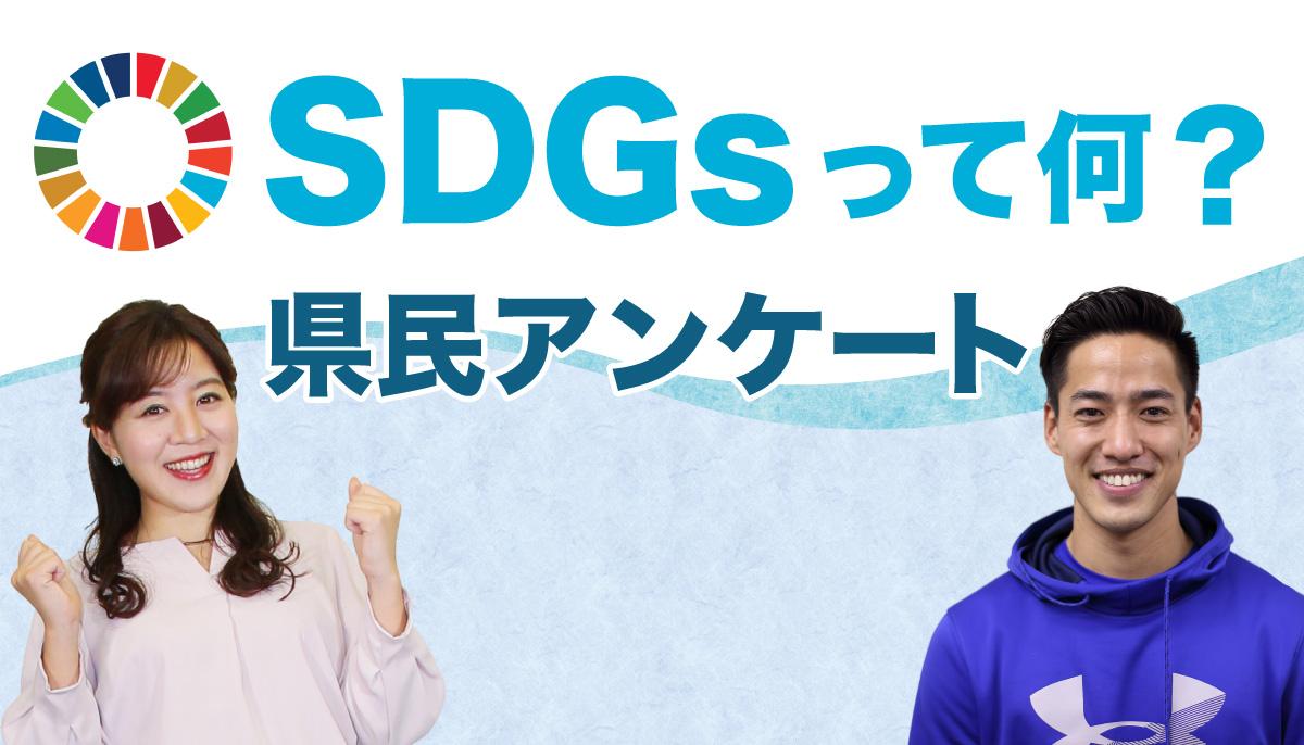 「SDGs県民アンケート」福島県民の関心度は46%ー 求められるテレビの役割|福島中央テレビ調査
