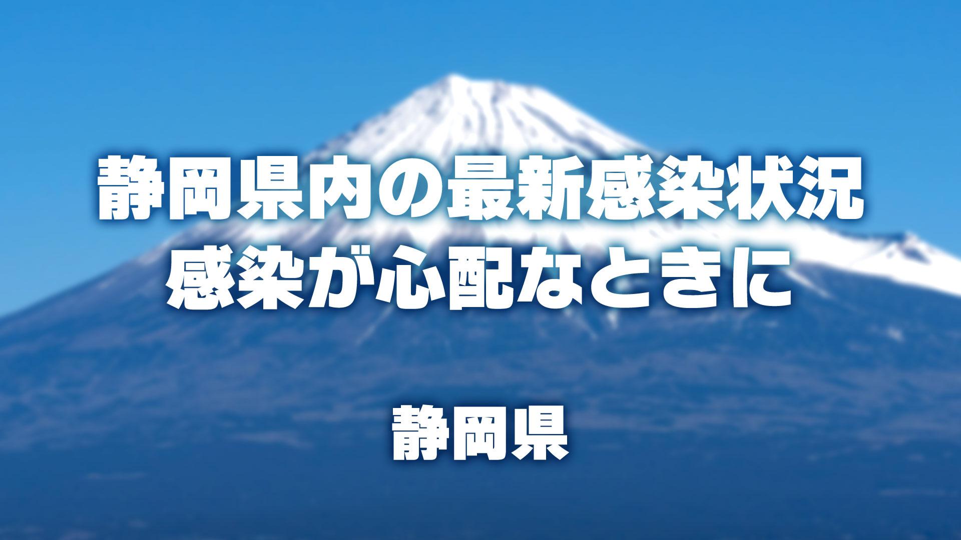 新型 コロナ ウイルス 静岡 県