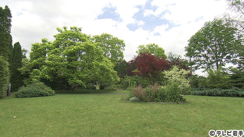 Vol.626 緑の庭で安らぐ