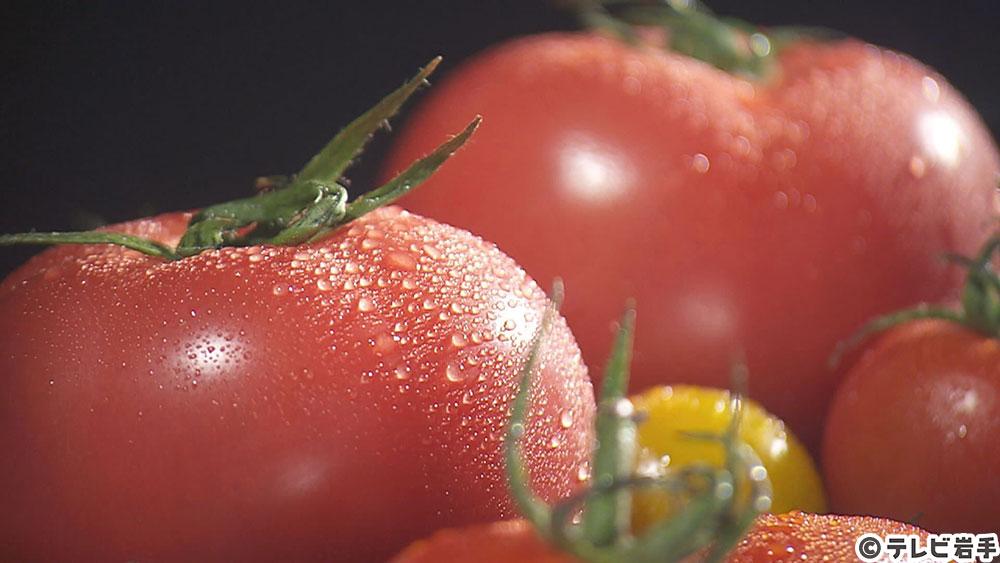 Vol.628 トマトのおはなし